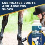 best horse joint supplement