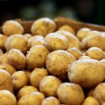 Can Horses Eat Potatoes?