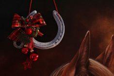 do horseshoes hurt horse