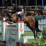 Type of Horse Competitions