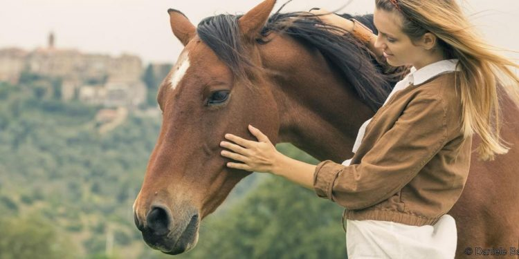 horse love to cuddle