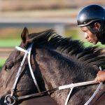 best horse riding helmet reviews