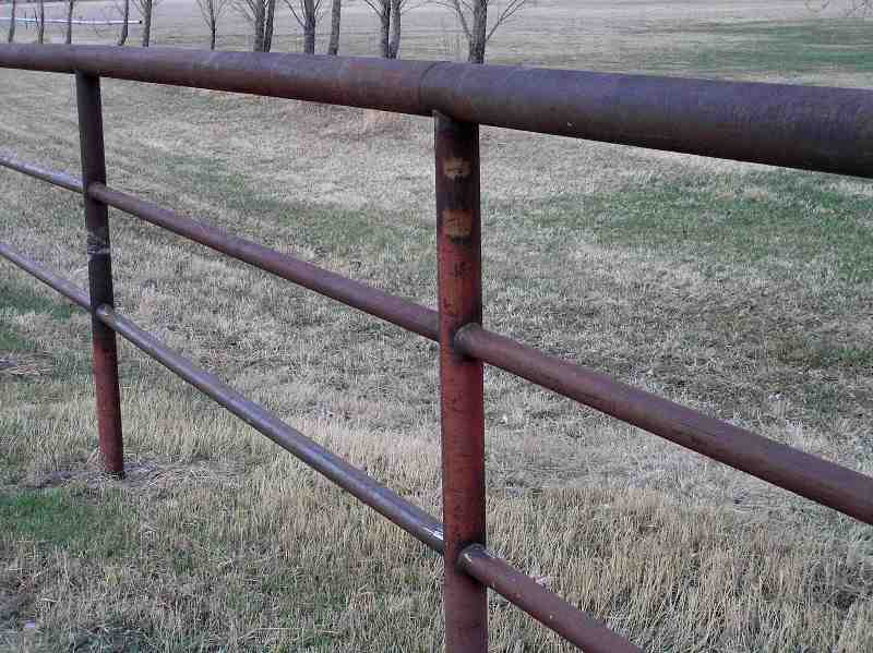 pipe horse fence