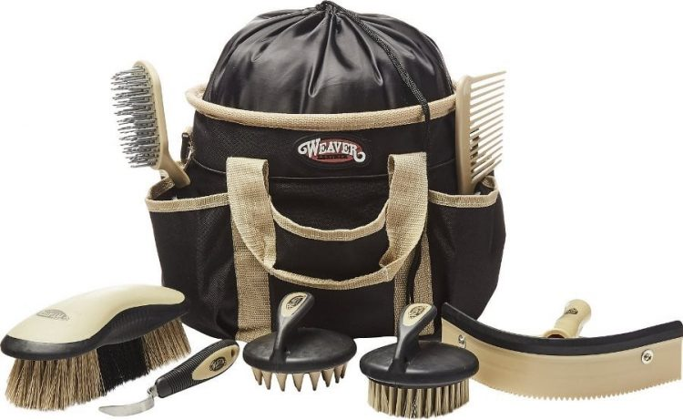 best horse grooming kits reviews