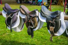 best-horse-saddles-reviews