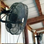 best horse stall fan for barn reviews