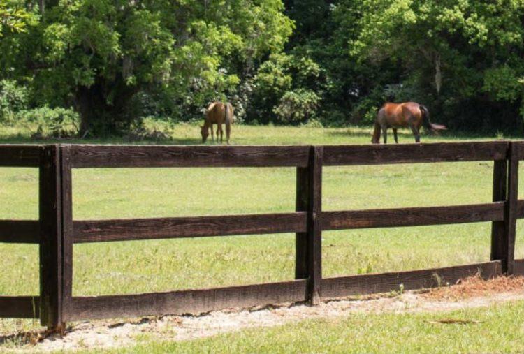 wood-rail-fence