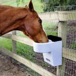 Best Automatic Horse Waterers Reviews
