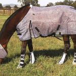 Best Fly Sheets for Horse Reviews