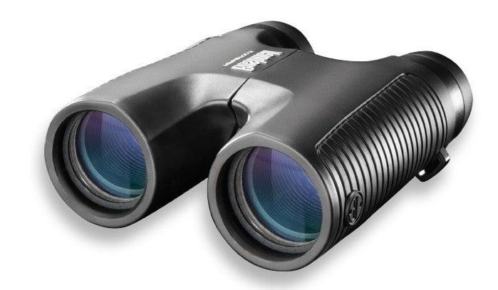 Roof prism binocular