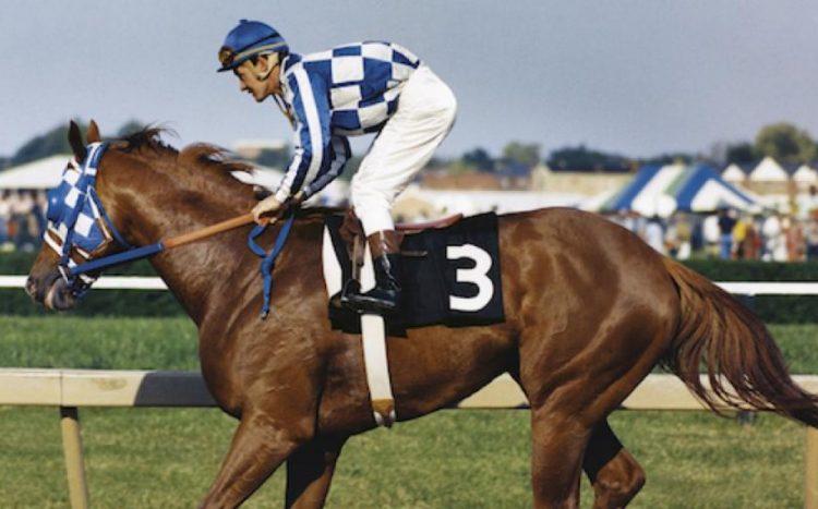 Secretariat horse
