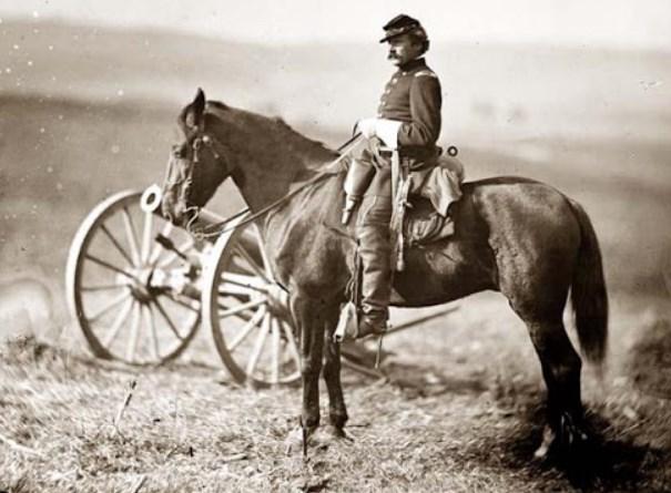 Morgan Horse used in Civil War