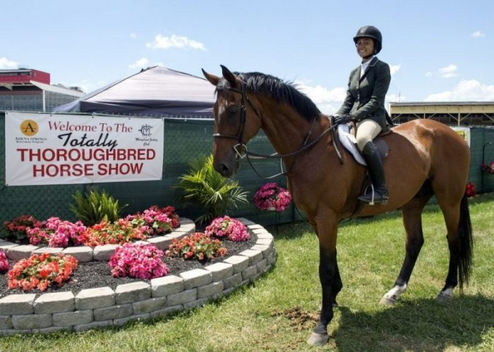 thoroughbred-horse-show