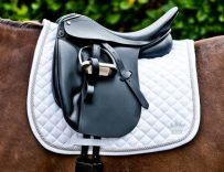 Best Dressage Saddles Reviews & Buying Guide