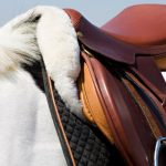 Best English Saddle Pad Reviews and Buying Guide