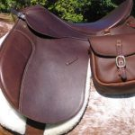 Best English Saddle Reviews - Buying guide