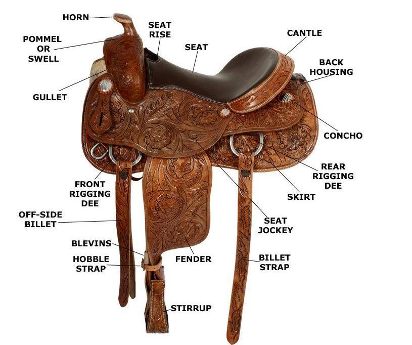 Part of A Barrel Racing Saddle