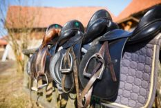 the most comfortable horse saddles