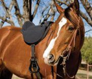 Mustang Soft Ride Saddle reviews