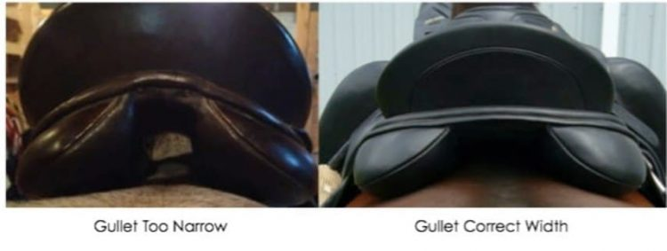 A-Saddle-With-Too-Narrow-Gullet-Width