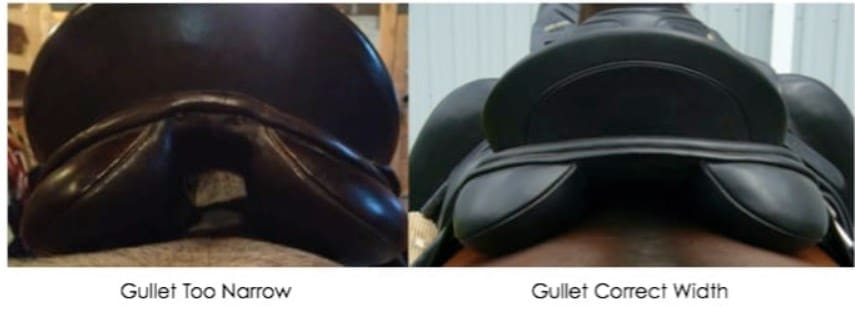 A Saddle With Too Narrow Gullet Width