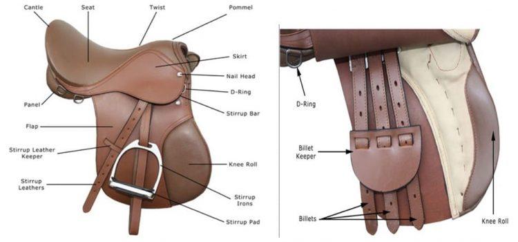 The-15-parts-of-English-saddle