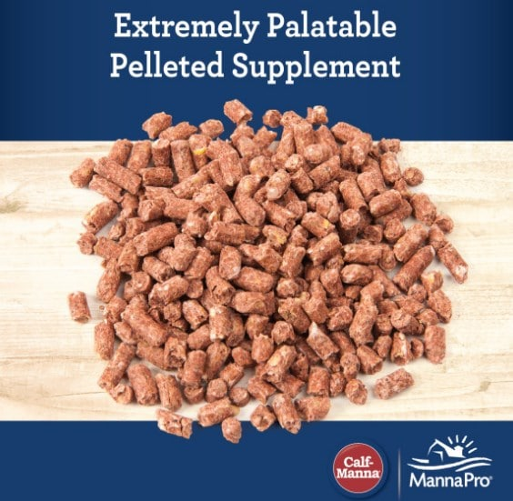 Calf Manna palatable supplement