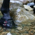 Cavallo Simple Hoof Boots Review