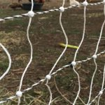premier 1 electronet fencing reviews