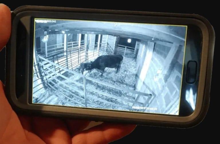 remote on mobile Barn Camera